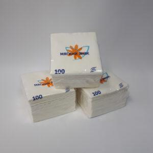 Салфетки бумажные «Мягкий знак» 24*24 100 листов